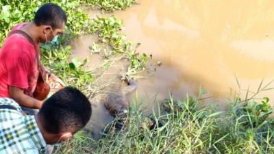 Penemuan Mayat Mister X di Sungai Bandar Jaksa Asahan