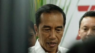 Jokowi Minta Transportasi Berbasis Listrik ke Anies