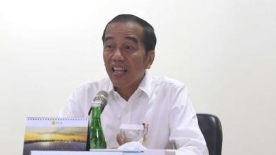 Menurut Istana, Ini yang Buat Jokowi Marah kepada Dirut PLN