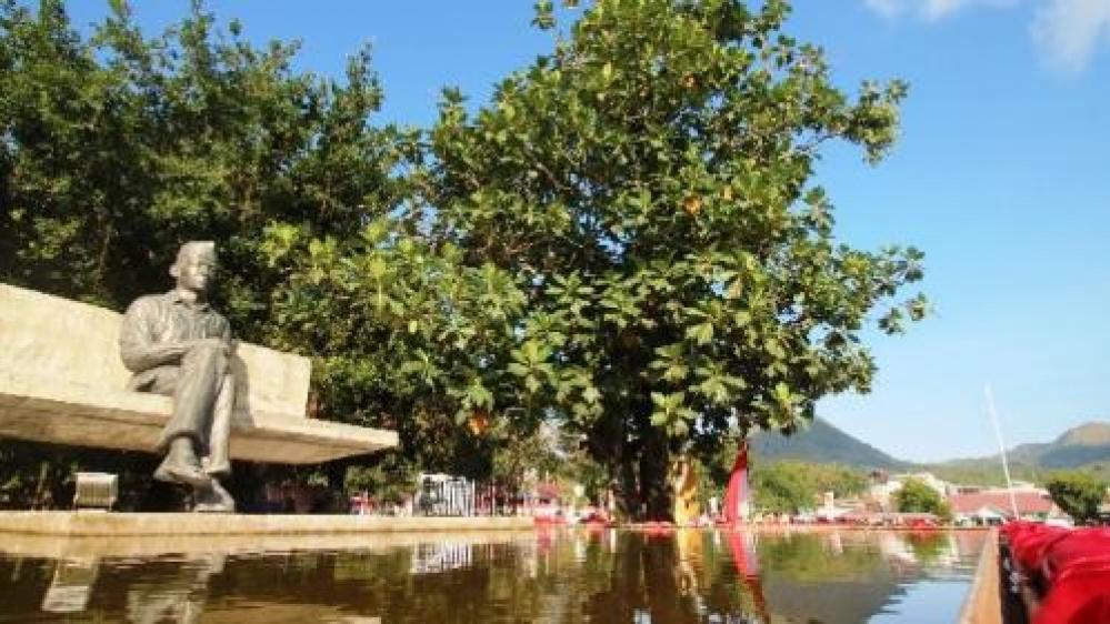Renungan Presiden Soekarno di Pohon Sukun Lahirkan Butir-butir Pancasila