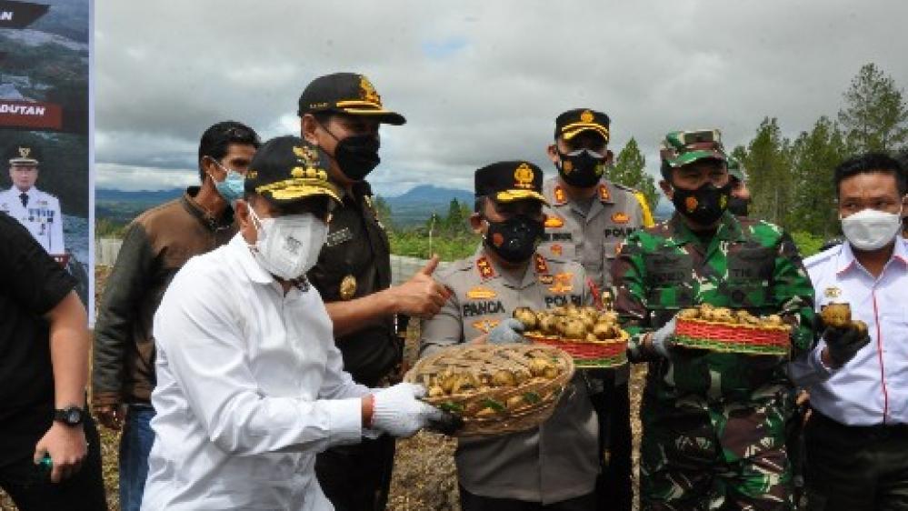 Menko Marves RI Didamping Kapolda Sumut Tinjau Pertanian Food Estate Humbahas,  Sebagai Persiapan Kunjungan Presiden Jokowi, Awal Desember 2021, Mendatang